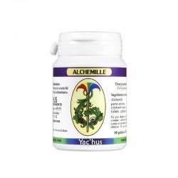 yachus-alchemille-cancer-sein-sexuel-menopause-hormonal