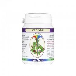 yachus-wild-yam-progesterone-menopause-diosgenine-hormones
