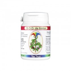 yachus-sod-de-melon-antioxydant-vieillissement-sevrage-dependance