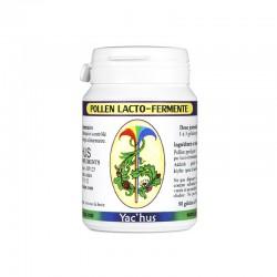 yachus-pollen-lactofermente-vitamines-mineraux