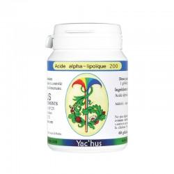 yachus-Acide-alpha-lipoïque-energie-antioxydant