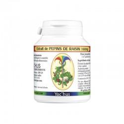 yachus-pepin-raisin-antioxydant-proanthocyanidol-vaisseau