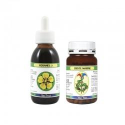 yachus-potentille-fausse-couche-fécondité-antioxydants-rhumatismes