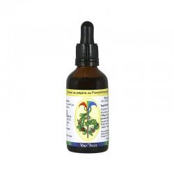yachus-extrait-pepins-pamplemousse-flavonoides-immunite