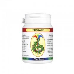 yachus-bugrane-reins-calculs-acide-oxalique
